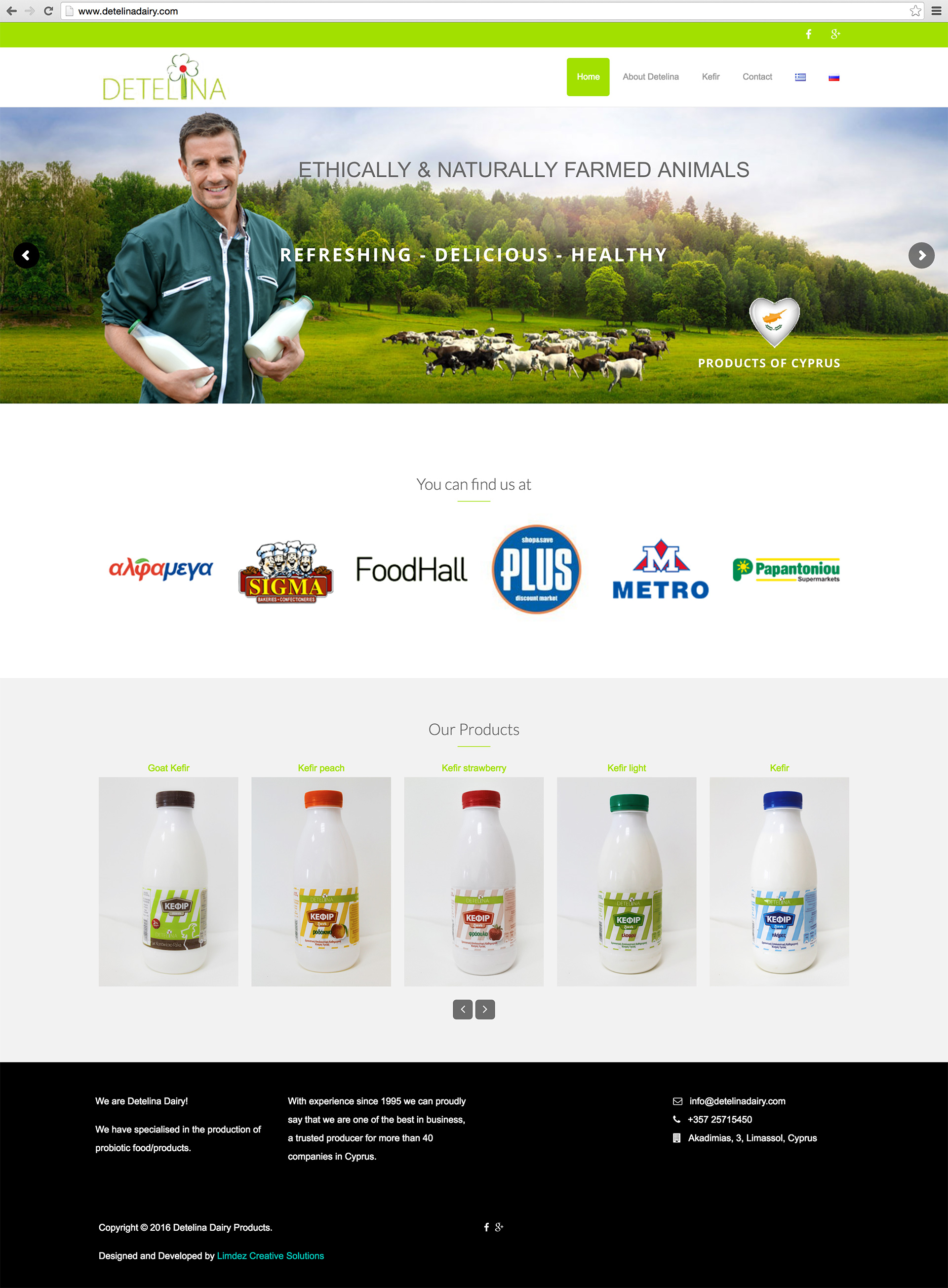 website design detelina dairy cyprus